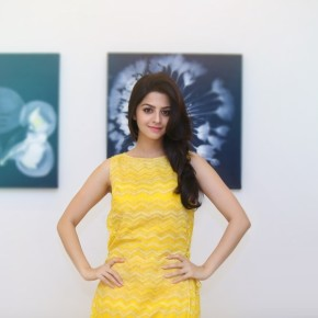Actress Vedhika  Stills (11)