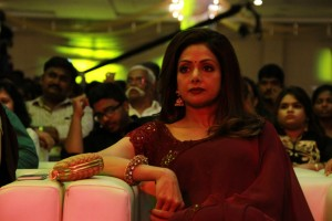 Puli Audio Launch Stills (Set 1) (18)